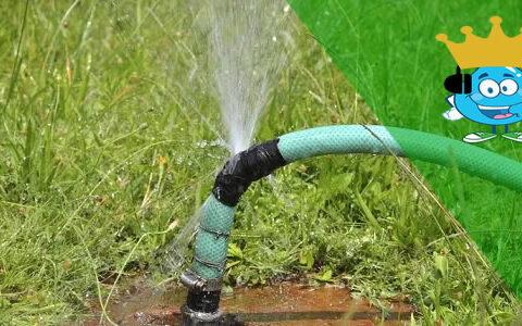 6 Dicas de Como Não Desperdiçar Água em Casa